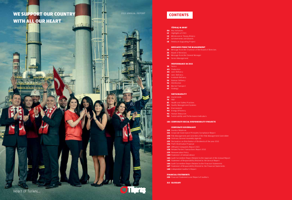 Turkiye Petrol Rafinerileri AS annual report 2013