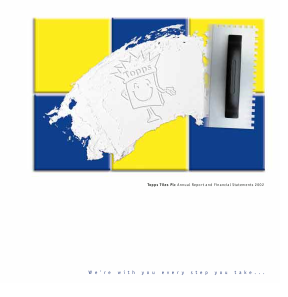 Topps Tiles Plc annual report 2002