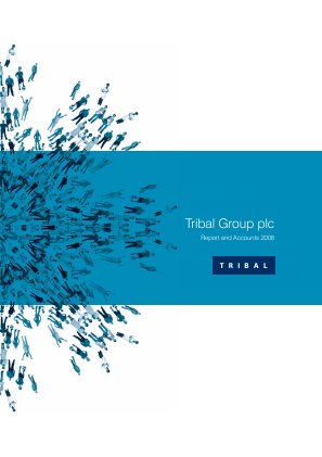 Tribal Group annual report 2008