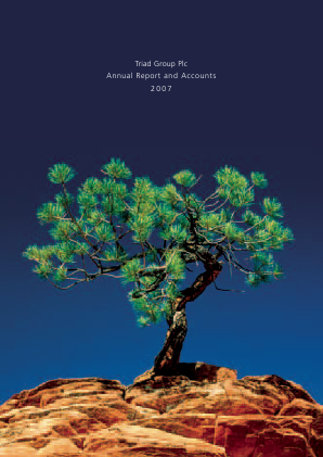 Triad Group annual report 2007