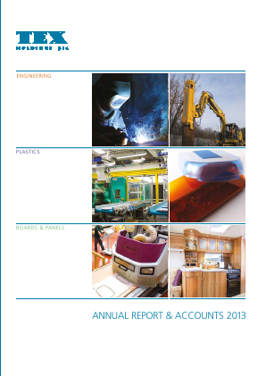 Tex Holdings annual report 2013