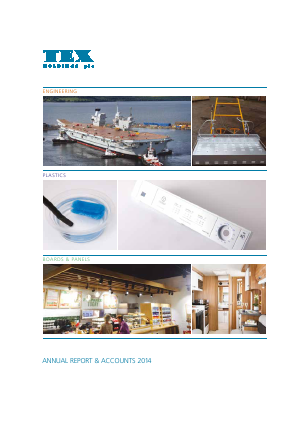 Tex Holdings annual report 2014
